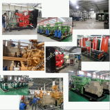100kw Genset silencioso ou central energética elétrica para o gerador do biogás do metano