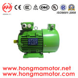 Controllo di velocità dell'invertitore di frequenza di Hmvp, motore asincrono asincrono Hmvp711-6p-0.18kw