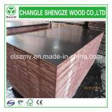 la película del grado de la construcción de la base del álamo de 18m m hizo frente a la madera contrachapada