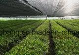 Tela tecida animal de estimação do controle de Weed da agricultura