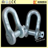 Jumelle d'acier inoxydable de matériel de calage, jumelle de D et jumelle de noix