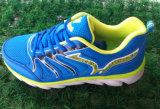 Le matériau scellé par colle de Msh sport de qualité de beaucoup de couleurs chausse des chaussures de chaussures de course
