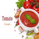 Organisch kein additive Bescheinigung eingemachtes Tomatenkonzentrat (STERN-Markengröße 400g)