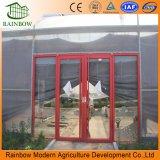 Commercila Venlo invernadero de vidrio con marco de acero galvanizado