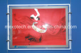 Carved Logo를 가진 Windows Display Ultra Thin Crystal LED Light Box