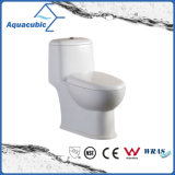 Sifónico de una pieza de cerámica Doble Descarga higiénico blanco (ACT8823)