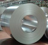 La paillette régulière Chromated a galvanisé la bobine en acier