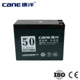 50ah Deep Cycle Battery Electric Bike Battery (14-65ah)