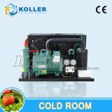 Kühlräume u. Gefriermaschinen