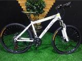 Bicicleta de montanha da polegada MTB do modelo novo 26 para a venda