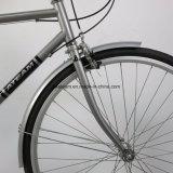 2017의 신제품 고품질 도시 자전거 (CTB7)