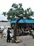 Искусственние валы мангровы для украшения парка