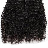 Cheveu de Brésilien de prolonge de cheveux humains de cheveu de Vierge de vison de Shenzhen de mode