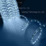 プールおよび噴水の軽いIP68 2ワイヤー円形のhrizonal LEDロープライト
