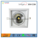 Super-Bright Bridgelux 옥수수 속 LED 칩을%s 가진 빛 3 년 보장 30W LED 반점
