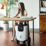 Elektrische Vouwbare Mobiliteit Autoped de Met drie wielen van dame Suitcase Scooter