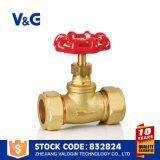 Válvula de batente da água da alta qualidade de China Suppier (VG-C22302)