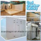 De koele Fabriek van de Kamer