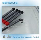 ISO9001 de Permanente Magneet NdFeB In entrepot van de vervaardiging voor Motor