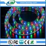 Lumière de bande flexible IP68 de volt élevé extérieur DEL