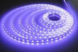 Illuminazione di striscia flessibile di alta luminosità 5050 LED