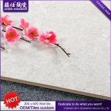 Großhandelskeramische Wand-Fliese des Esszimmer-300X600