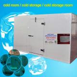 Quartos frios & congeladores pequenos e grandes