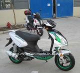 vespa del gas 125cc150cc/50cc, vespa (Voletta)