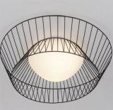 Lampada di vetro del soffitto di stile di arte moderno del LED con l'UL, Ce, VDE, Rhos