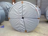 Nastro trasportatore termoresistente Ep100 per la pianta del frantoio
