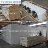Комната PU холодная установленная с панелью полиуретана и конденсируя блоком