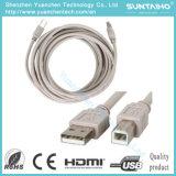 Оптовый мужчина к женскому кабелю принтера USB