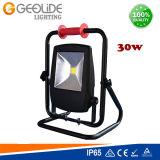 Projector ao ar livre do diodo emissor de luz da qualidade 30W para o parque com Ce (FL106-30W)