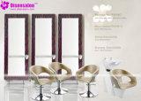 Présidence populaire de salon de coiffeur de shampooing de meubles de salon de qualité (P2006E)