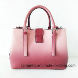 Hete Trendy Ontwerper Dame Gradient Color PU Handbags (nmdk-060203)