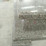 Monumento/lápide/lápide quentes do granito para o mercado de Poland