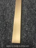 El oro aplicó perfil de aluminio anodizado de la protuberancia con brocha