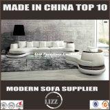 Moderner Entwurfs-Wohnzimmer-Sofa für Hauptmöbel (LZ-105)