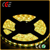 24V 96LEDs / M 4in1 Rgbww / Warm White LED Light Ribbon