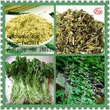 Chinees Kruiden Benzoic Zuur Leonurine voor Vrouwelijk Geslacht Enhacement 7097-09-8