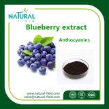 HPLCのプラントエキスによる低価格のブルーベリーのエキス25%のアントシアニジン粉