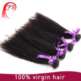 Trama Kinky Mongolian crua e não processada do cabelo Curly de cabelo humano