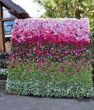 結婚式の迫真性ファブリック花のプラント壁
