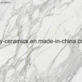 Mattonelle di pavimento piene del materiale da costruzione delle mattonelle del marmo del corpo