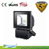 Proiettore esterno dell'indicatore luminoso 100W LED del giardino del traforo della PANNOCCHIA di IP65 Bridgelux