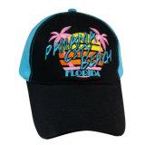 3D 로고를 가진 분홍색 니스 야구 모자 Bb206
