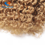 Cabelo profundo do Virgin do cabelo Curly 1b/27/30 Ombre Malysian da onda do Virgin malaio