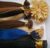 Estensioni dei capelli di Prebonded (FJLP-002)