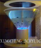 Producto del acuario