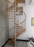 Escadaria espiral na escadaria espiral de madeira da madeira e do aço inoxidável
